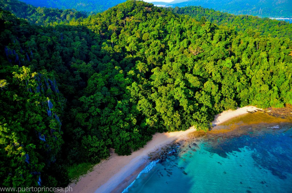Condo-in-Palawan-Camella-Manors-Verdant-The-Last-Ecological-Frontier-of-the-Philippines