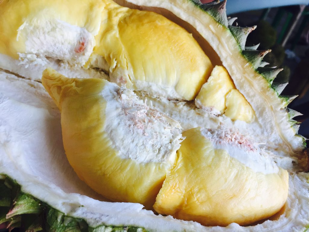 Durian Fruit   Ultimate Davao Food Guide   Camella Manors