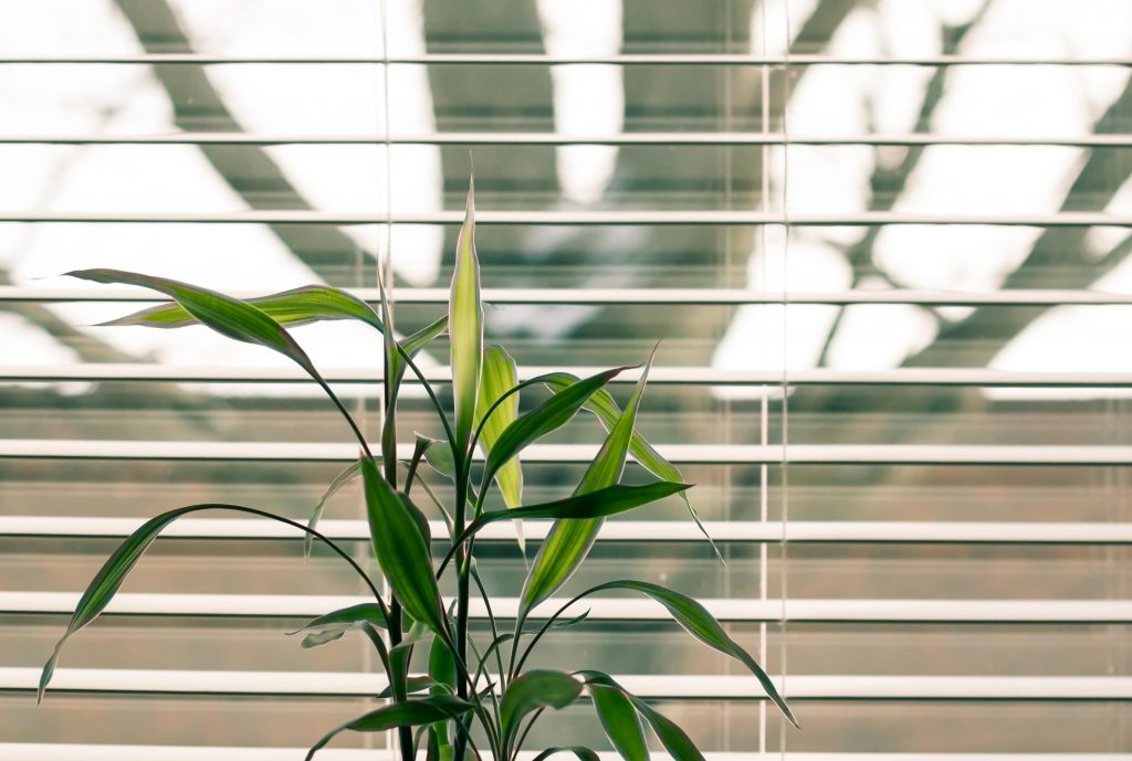 Blinds - Condo Spot You Forget to Clean | Camella Manors