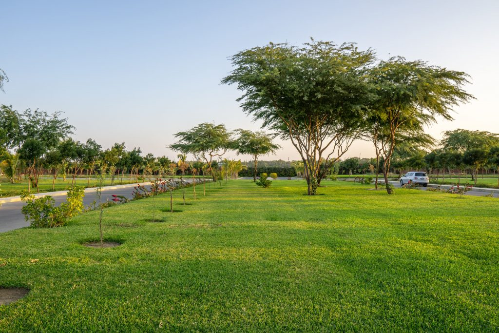 Condo Retirement Homes with Green Spaces   Camella Manors
