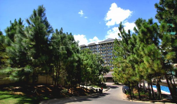 Experience Pine-Estate Condo Living with hundreds of Caribbean Pine Trees in Camella Manors | Pine-Estate Condo in the Philippines
